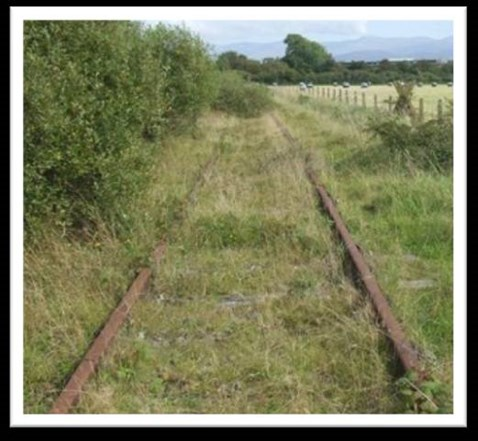 Habitat survey needs to be carried out on Amlwch branch line