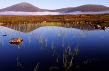Rannoch Moor ©Lorne Gill SNH