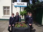 Harlech pupils transform train station into touching tribute for Josh: Ysgol Ardudwy school council members