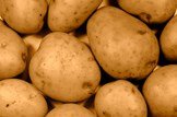 A helping hand at home and abroad: Agriculture-potatoes-crop-farming