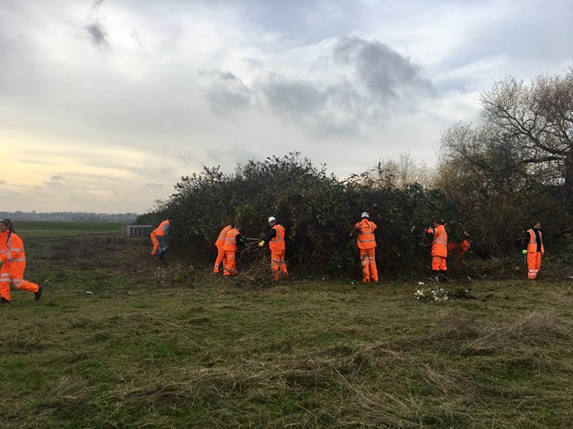 Gospel Oak to Barking staff help to create wildflower meadow at Walthamstow Wetlands: Gospel Oak to Barking team work on the Walthamstow Wetlands