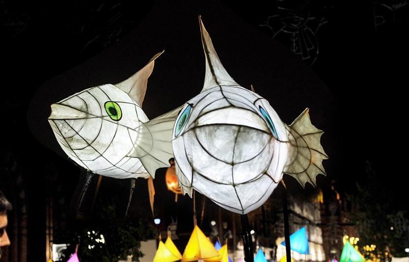 City centre to host first ever light triathlon: lanternparade.jpg