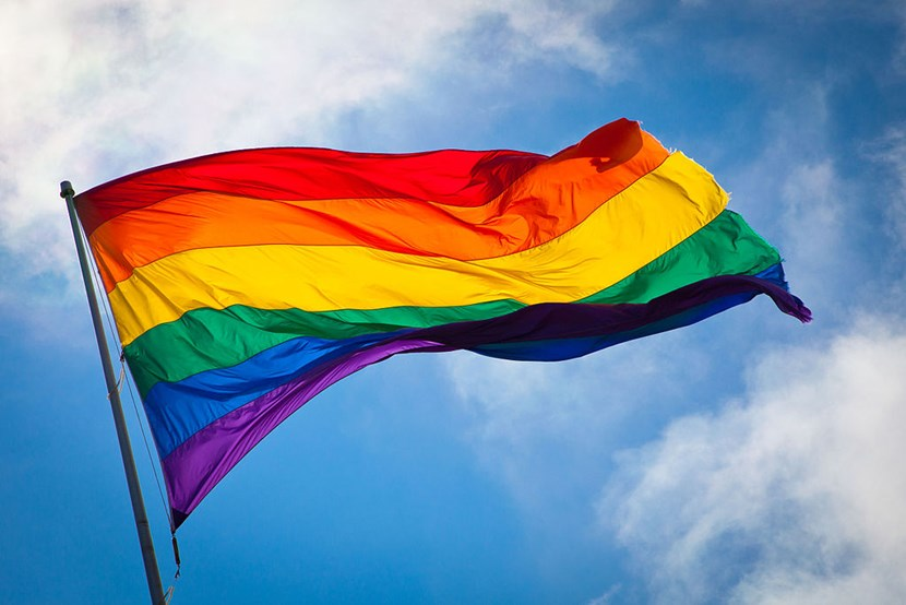 Leeds lights up in rainbow colours for LGBT+ History Month: rainbowflag.jpg