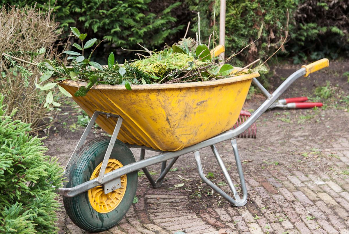 Garden waste pic
