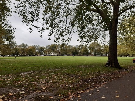 Highbury Fields was one of the sites recognised in the Green Flag Awards for 2020
