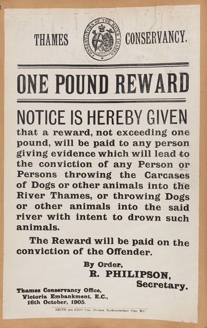 Dogs thrown into Thames poster, 1905: Dogs thrown into Thames poster, 1905 - copyright Berkshire Record Office