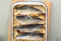 New Quay mackerel (72dpi)