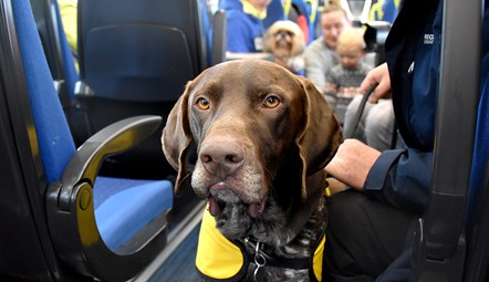 Northern offers 'paws for thought' at Leeds station: Dogs at Blackpool 8