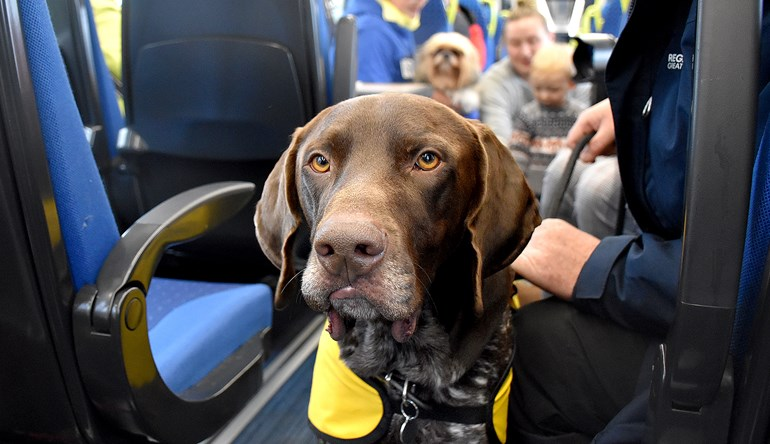 Northern offers 'paws for thought' at Leeds station