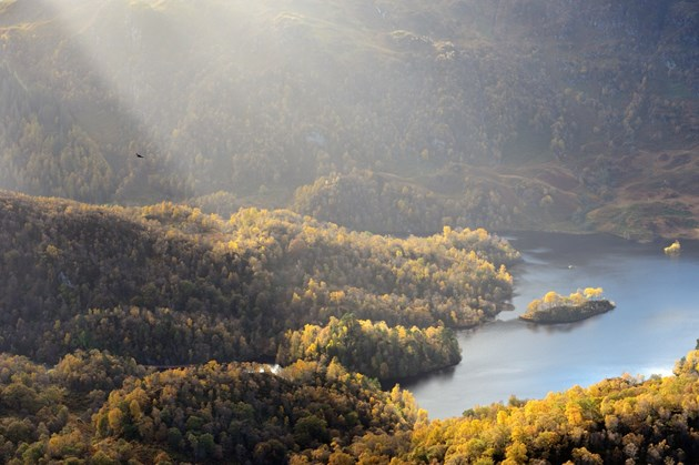 Vital benefits of Scotland's nature now increasing year on year: Loch Katrine from Ben A'an in the Great Trossachs Forest National Nature Reserve. ©Lorne Gill/SNH