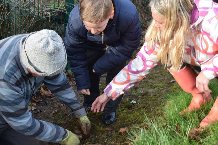 School children in Leeds are rooting for the planet this Valentine's Day: Tree planting 3