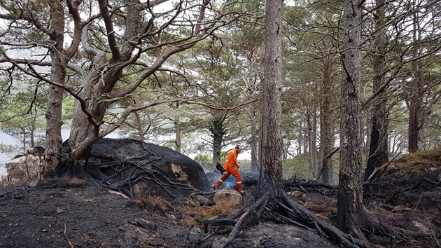 Damage caused by a camp fire on the island of Eilean Eachainn in NatureScot's Beinn Eighe and Loch Maree Islands National Nature Reserve last year ©Doug Bartholomew/NatureScot