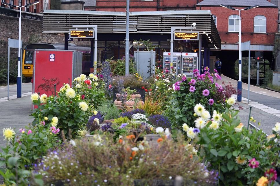Biodiversity at stations