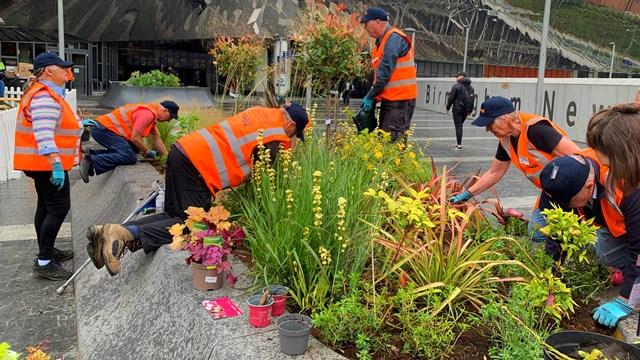 Birmingham New Street flowers get Shakespearean treatment: Volunteers sprucing up Birmingham New Street station's planters