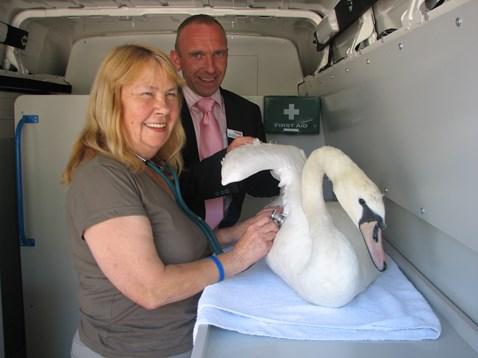 Swan Sanctuary ambulance handover