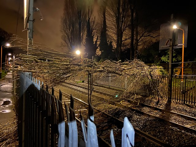 Cross City line fully reopens after fallen tree pulls down overhead power lines: Tree on the line at Wylde Green