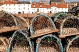 Further support for Scottish fishing industry: Marine-fisheries-fishing-creels