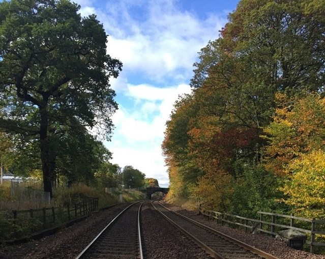 Why leaves on the line is no joke for Scotland's railway: Dalgety Bay 04.10 (1)