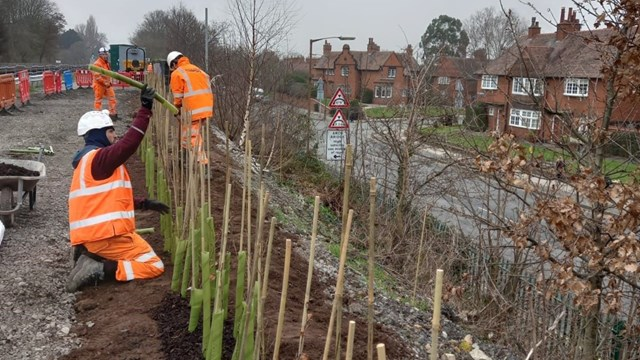 Big dig boosts railway biodiversity on Merseyrail network: Port Sunlight tree planting on Merseyrail network
