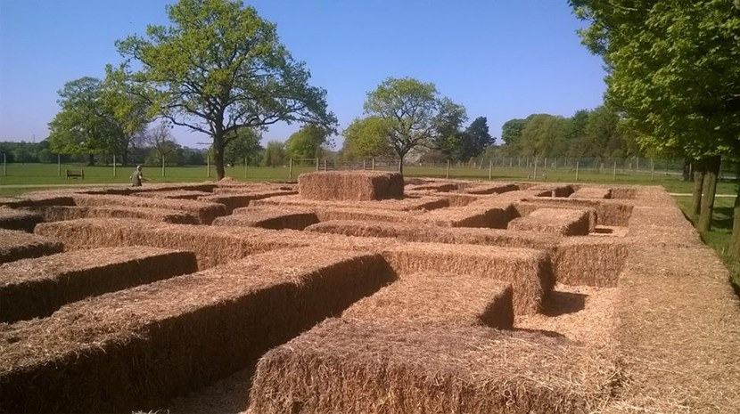 A-maze-ing new attraction for Lotherton Hall this Bank Holiday : maze.jpg
