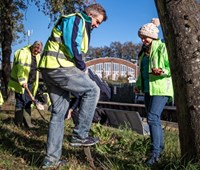 Southeastern launches £400,000 community rail fund: Planting flowers for Rotary Club