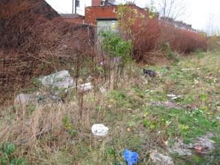 Deepdale clean-up_1