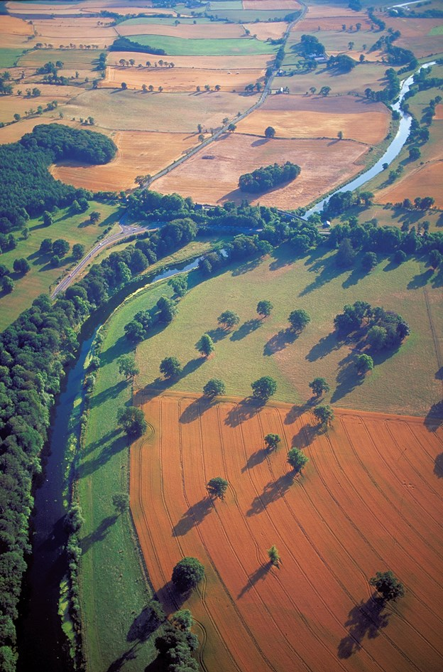 River Tweed - Arable farmland by the River Tweed, Borders. ©Patricia and Angus Macdonald-NatureScot