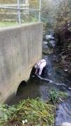 Anthony taking water sample 09.11.18