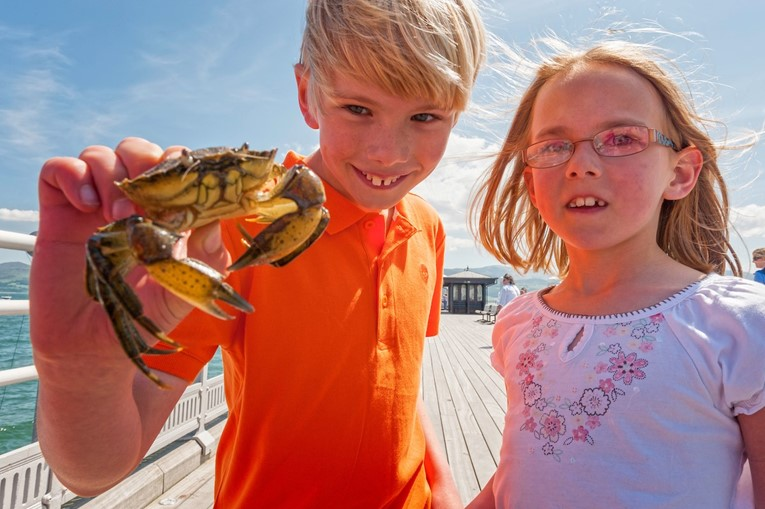 8 (rail) ways to wear your kids out this half term in North Wales: Children by the sea in North Wales
