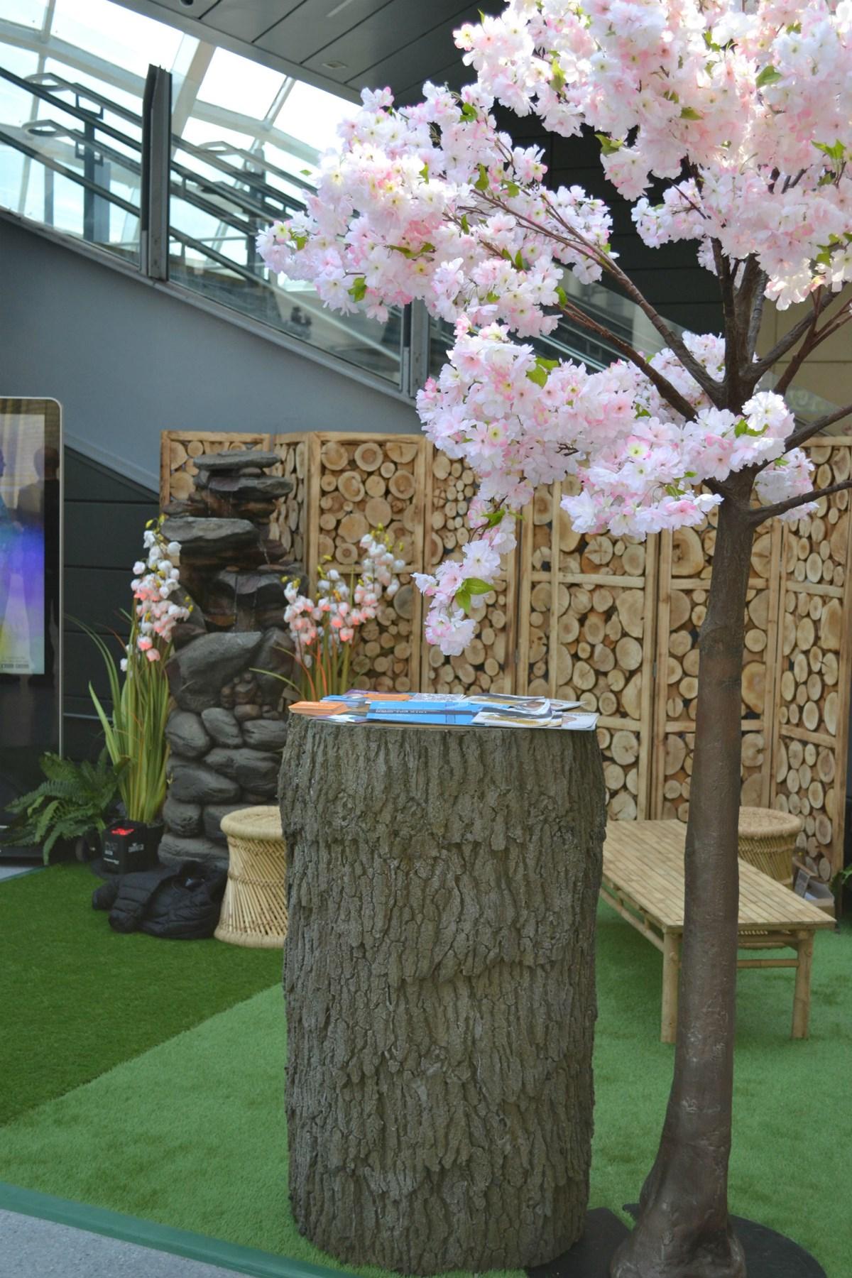 Zen garden2