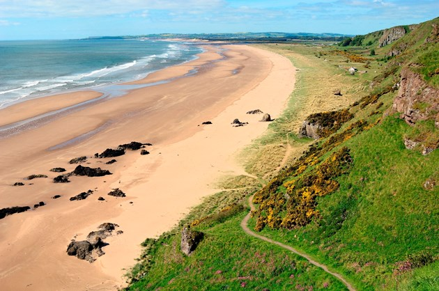 St Cyrus national nature reserve: St Cyrus national nature reserve, credit SNH/Lorne Gill.