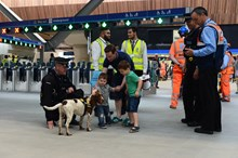 Police dog and children: Children stroke a police dog