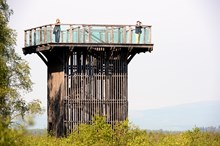 The Viewing Tower at Flanders Moss National Nature Reserve. ©Lorne Gill-NatureScot