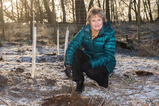 New flagship fund for nature launched: DMC CUNNINGHAM PLANTING 07