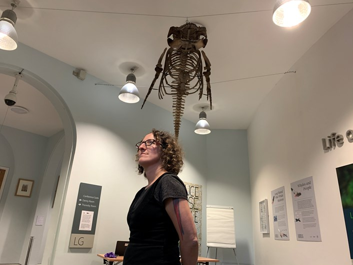 Striking display brings museum's Victorian whale to life: img-3496-598308.jpg