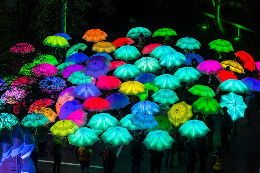 Carnival atmosphere as dazzling dancers join illuminated parade: cirquebijouumbrellaproject-andrepattenden.jpg