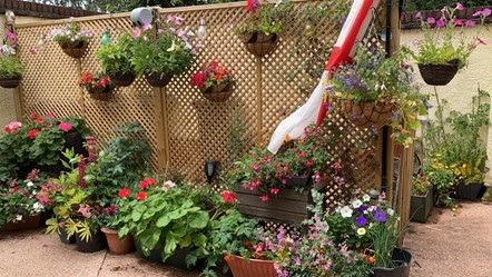 Winning patios  and containters
