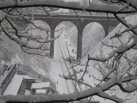 January 2010, snowy Sussex