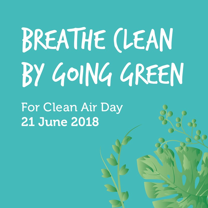 Breathe clean by going green in Leeds for Clean Air Day 2018: feedteasergraphics.jpg