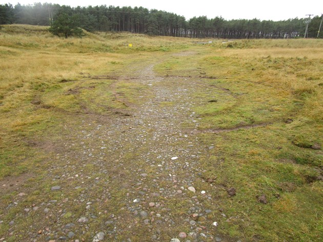 Rare habitats being damaged by off-road vehicles: Loch Fleet SSSI - Vehicle damage to sand dune