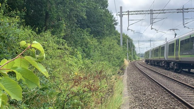 West Parade trackside with LNR - 24 July 2020
