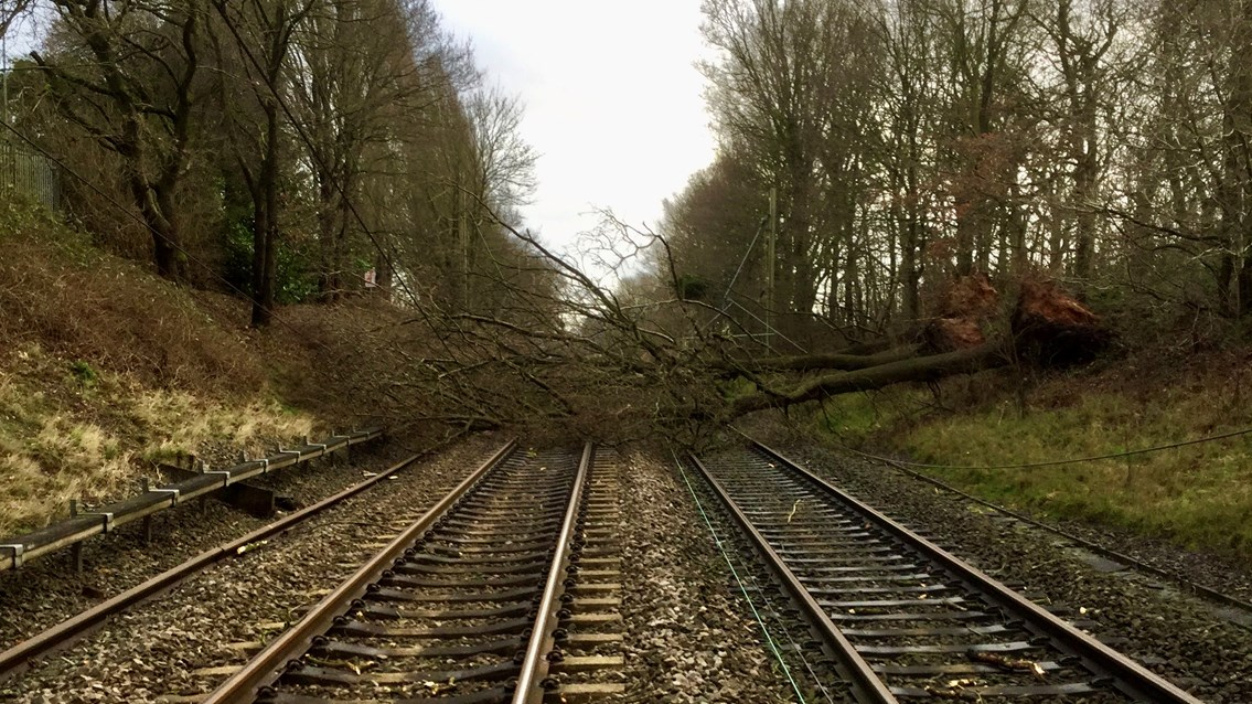 Passengers warned of likely rail disruption as Storm Dennis sweeps across Britain: Tree blocking all lines at Four Ashes in Staffordshire