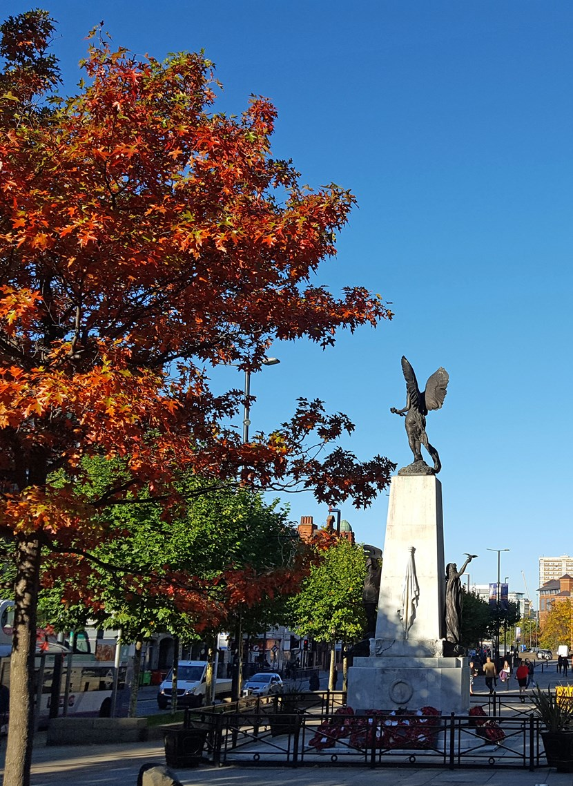 Lord Mayor to lead Remembrance Sunday tributes in Leeds: warmemorialandtownhallc102018-973477.jpg