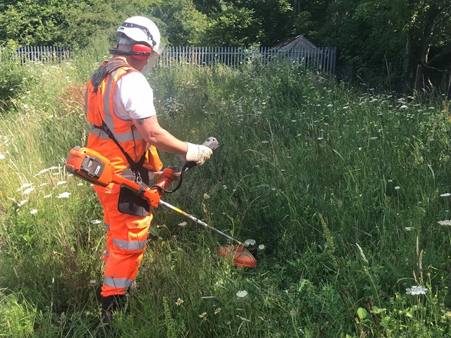 Trial of electric strimmers and trimmers to improve conditions for staff and railway neighbours: Railway strimmers trial