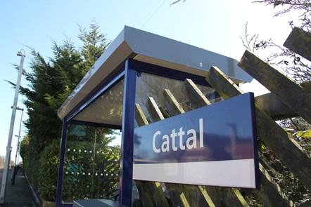 Cattal 1
