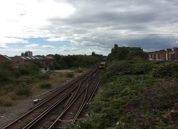 Tree-removal to keep railway safe at Rock Ferry: Rock Ferry