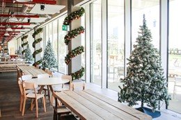 Christmas tree trends for 2017
