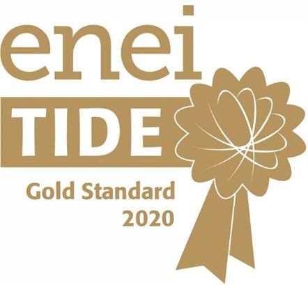 enei tide gold standard logo 2020: Logo for the enei gold awards- employer recognition for equality and diversity