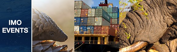 Save the date: 9 February 2021: Webinar on accelerating action against wildlife trafficking in international maritime supply chains: IMO-UfW Webinar event banner NEW