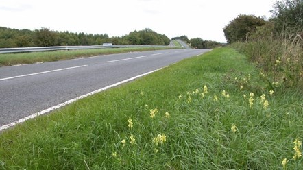 Grass verge cutting to make Andoversford and Cirencester safer: A40 verges